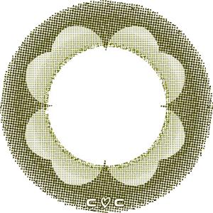 四葉のクローバー:レンズ画像
