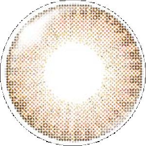 シナモン:レンズ画像