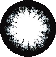 ロータスブラック:レンズ画像