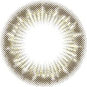 オリーブアッシュ:レンズ画像