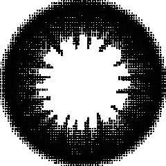 N-1 リッチブラック:レンズ画像