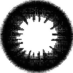 O-1 シャギーブラック:レンズ画像