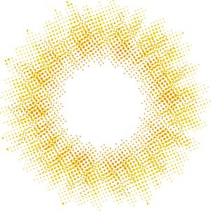 コーラルブラウン:レンズ画像