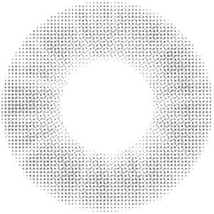 スレートグレイ:レンズ画像