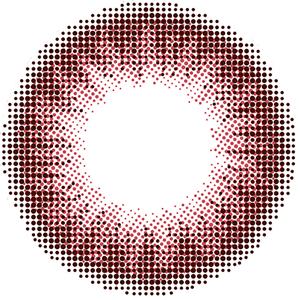 09-フラミンゴ:レンズ画像