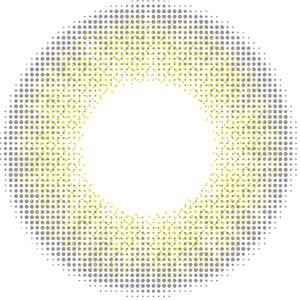 15-ライズ:レンズ画像